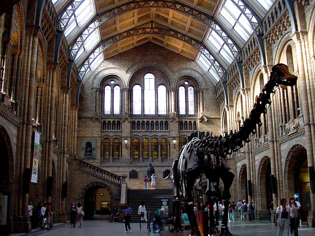Londres - Museo Historia Natural