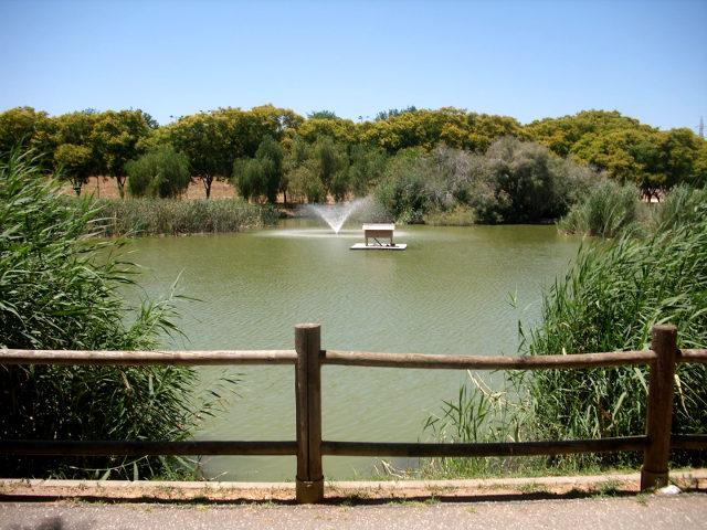 Sevilla - Parque Miraflores