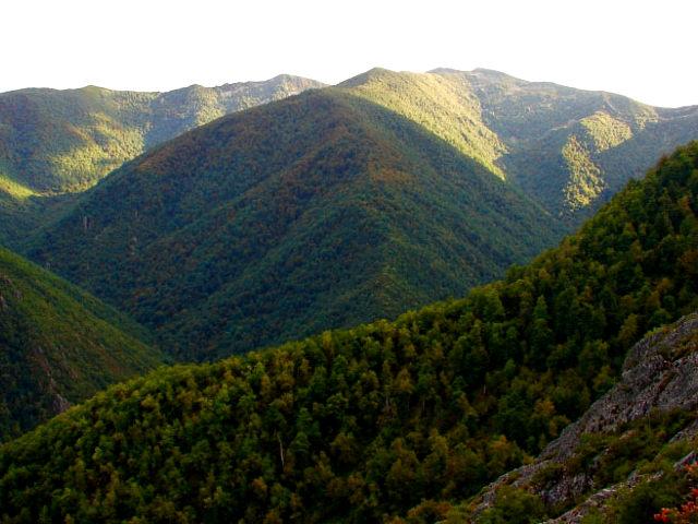 Asturias - Muniellos