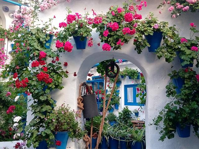 Qué hacer en Córdoba con niños. Mejores sitios que visitar