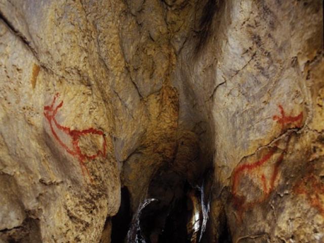 Cantabria - Cueva Covalanas