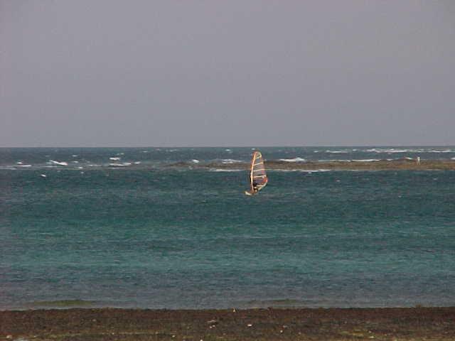 Los 5 mejores planes que hacer en Fuerteventura