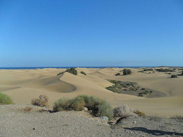 Las 5 mejores playas de Gran Canaria