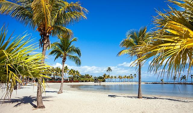 5 lugares magníficos para disfrutar de unas vacaciones con niños en Miami