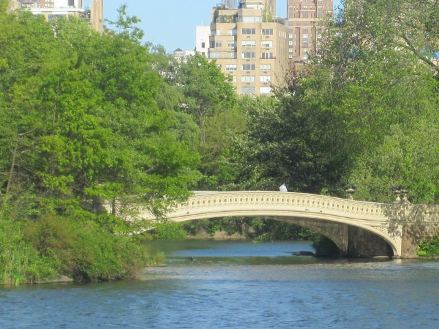 Nueva York - Central Park - Bow Bridge
