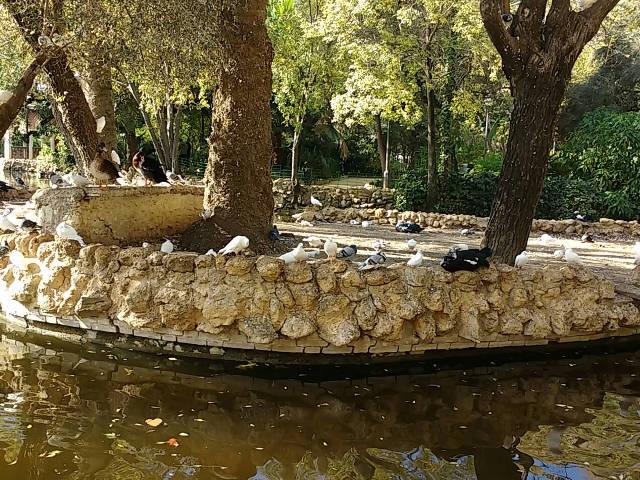 Sevilla - Parque Maria Luisa